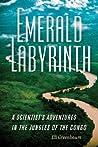 Emerald Labyrinth by Eli Greenbaum