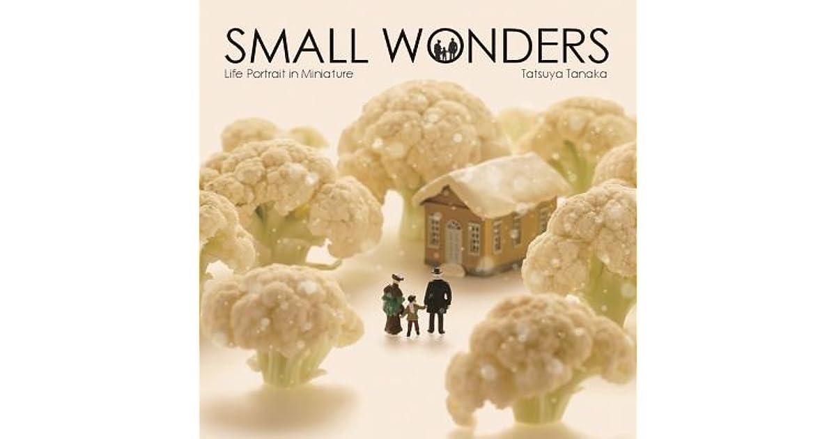 Small Wonders - Life Portrait in Miniature by Tatsuya Tanaka