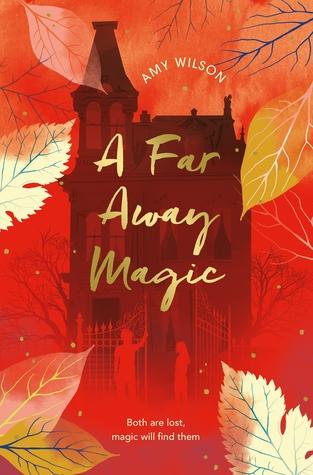 A Far Away Magic by Amy  Wilson