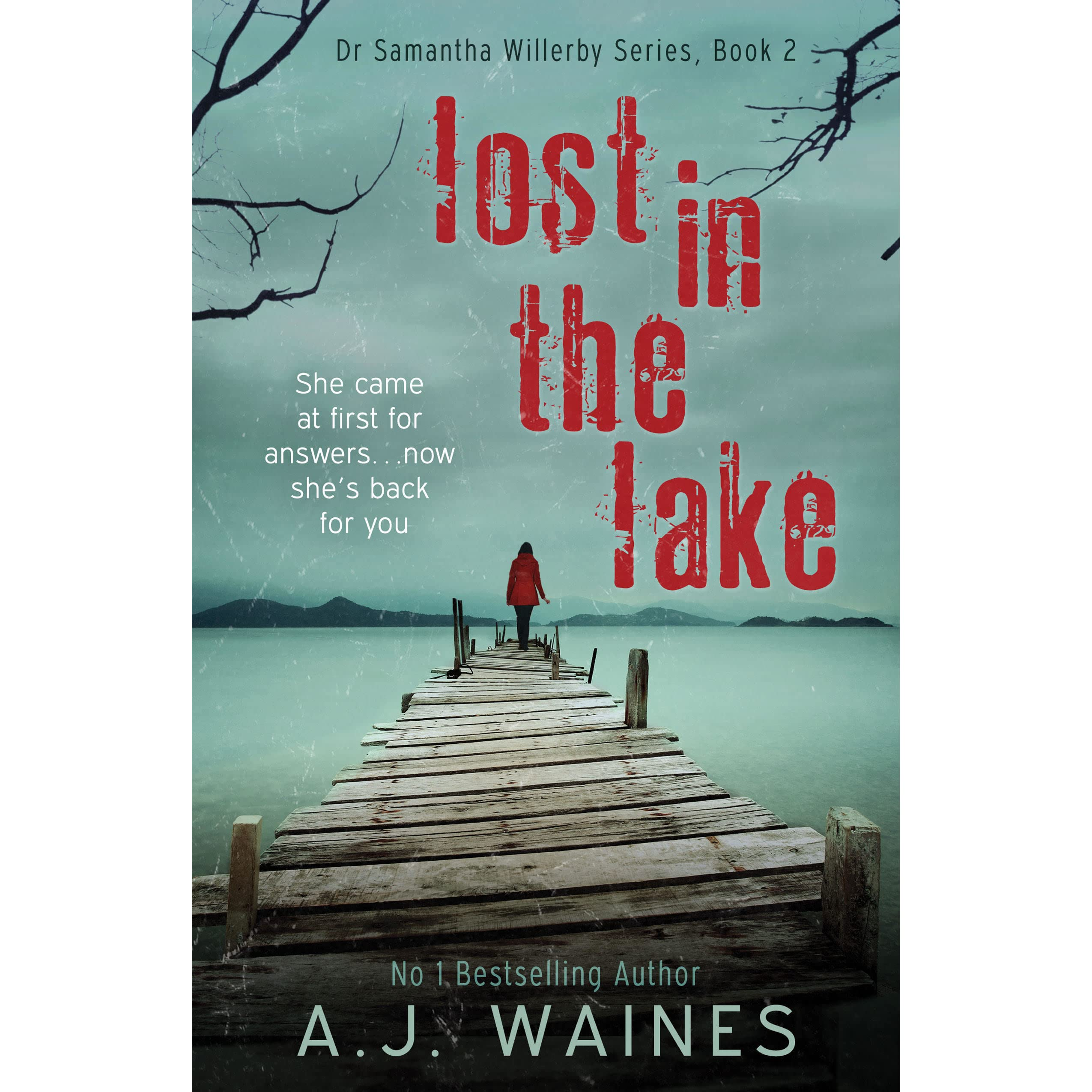 Lost In The Lake (Dr. Samantha Willerby, #2) by A.J. Waines