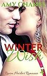 Winter Wish: Raven Harbor Romance 4