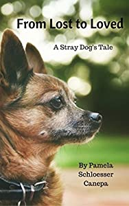 From Lost to Loved: A Stray Dog's Tale