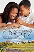 Missing Destiny (A Chandler County Novel Book 1)