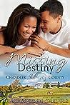 Missing Destiny (A Chandler County Novel Book 1)