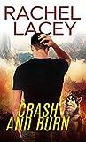 Crash and Burn (Stranded, #1)