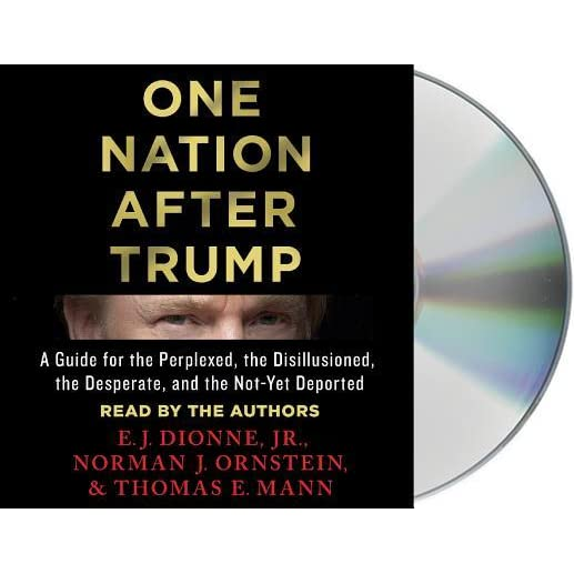 One Nation After Trump: A Guide for the Perplexed, the