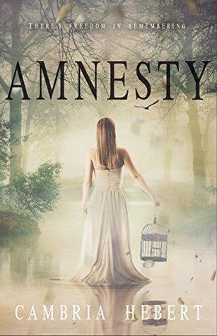 Amnesty (Amnesia, #2)