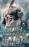 Bear Mountain Baby (Bear Mountain Shifters, #2)