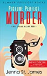 Picture Perfect Murder (Ryli Sinclair Mystery #1)