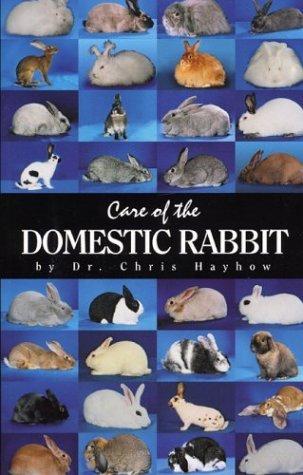 Care of the Domestic Rabbit