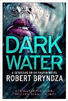 Dark Water (Detective Erika Foster, #3)