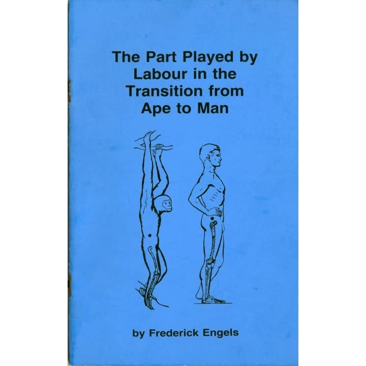The Part Played By Labour In The Transition From Ape To Man By