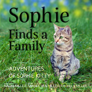 Sophie Finds a Family (Adventures of Sophie Kitty #1)