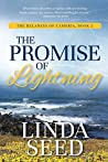 The Promise of Lightning (The Delaneys of Cambria, #2)