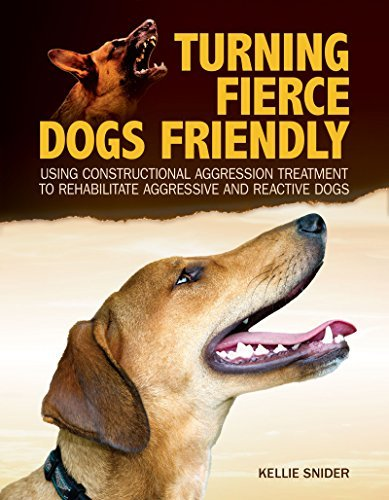 Turning Fierce Dogs Friendly Using Constructional Aggression Treatment to Rehabilitate Aggressive and Reactive Dogs