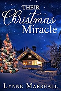 Their Christmas Miracle (Charity, Montana #2)