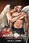 The Angels Fall (Boundless Love #1)