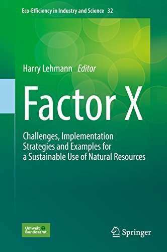 Factor X Challenges, Implementation Strategies and Examples for a Sustainable Use of Natural Resources