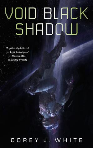 Void Black Shadow (Voidwitch Saga, #2)