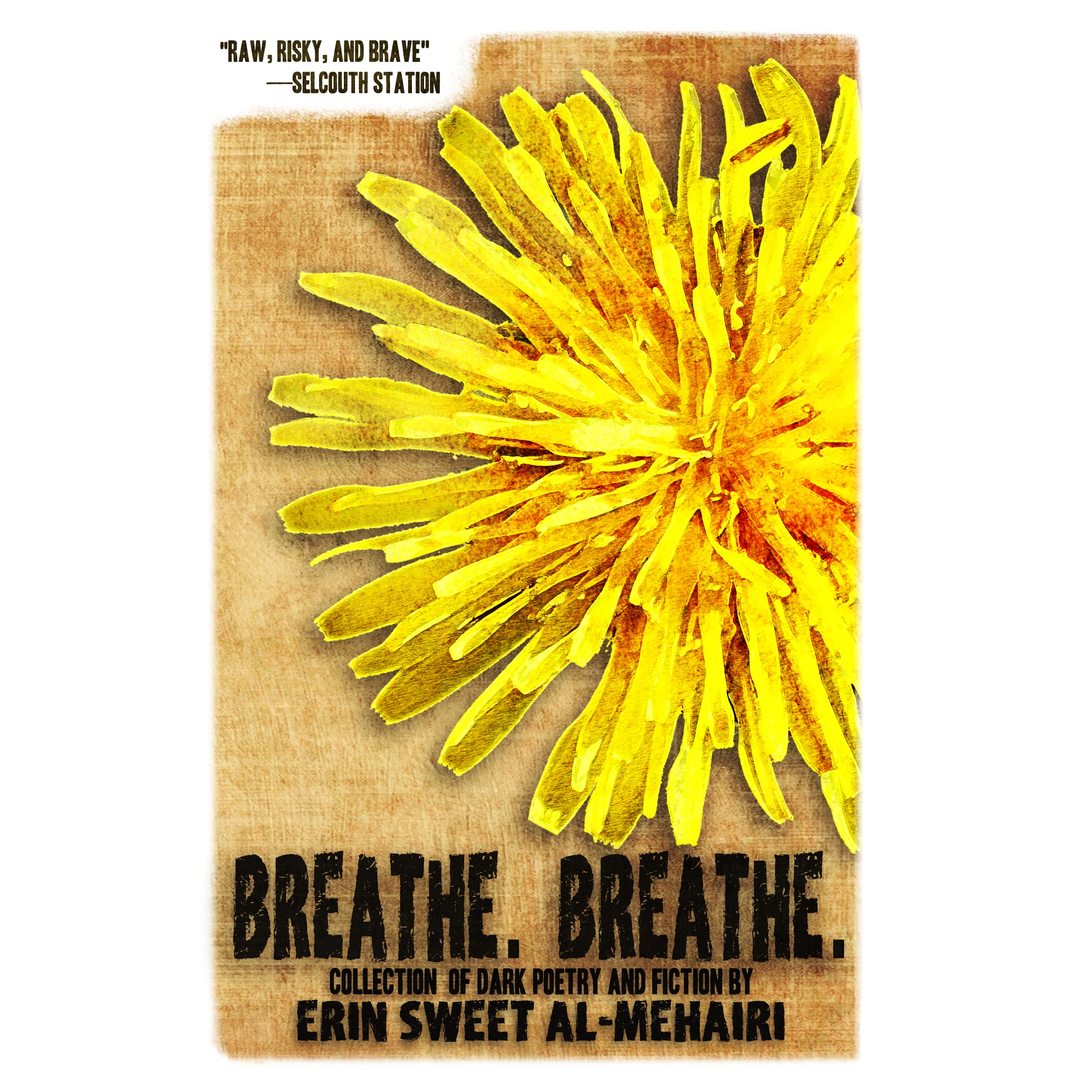 Image result for erin sweet al mehairi breathe breathe