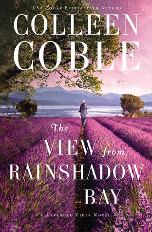 The View from Rainshadow Bay (Lavender Tides, #1)