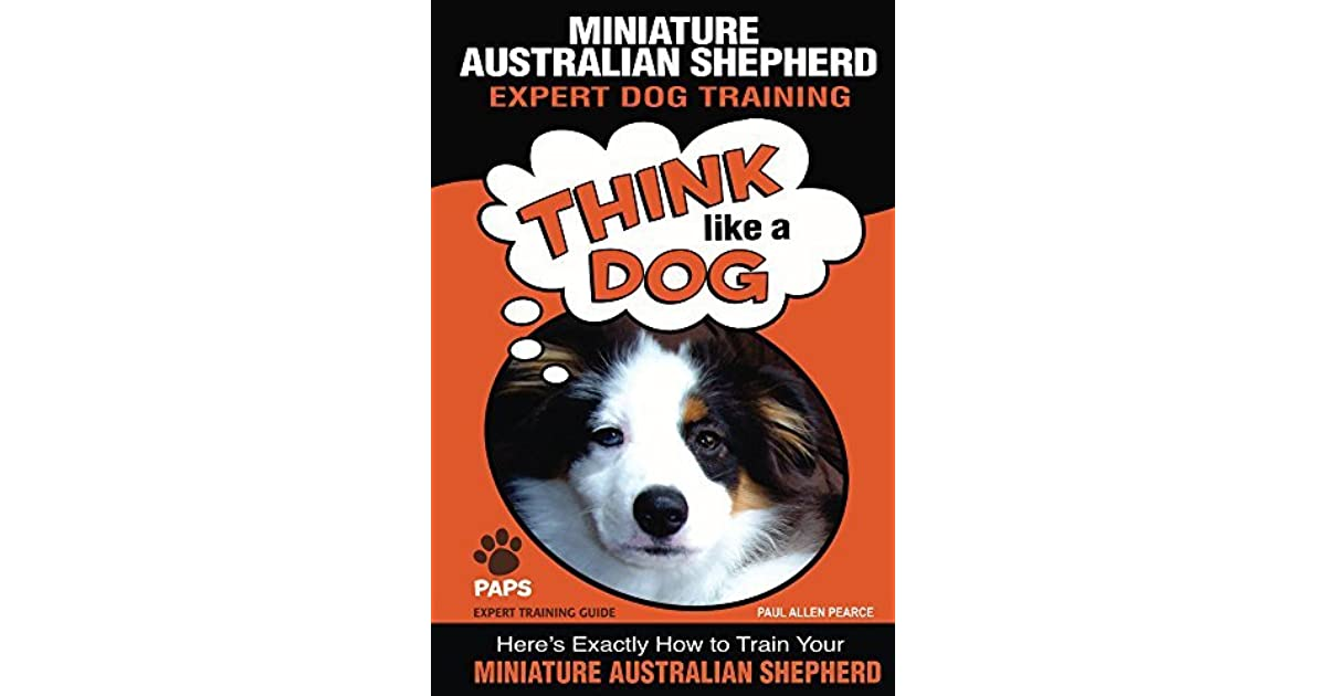 Miniature Australian Shepherd Expert Dog Training Think Like A Dog Here S Exactly How To Train Your Miniature Australian Shepherd By Paul Allen Pearce