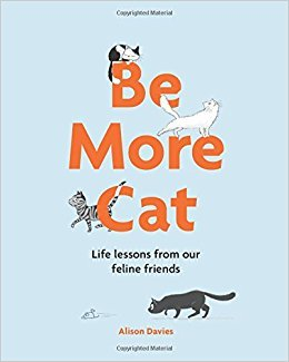 Be More Cat Life Lessons from Our Feline Friends