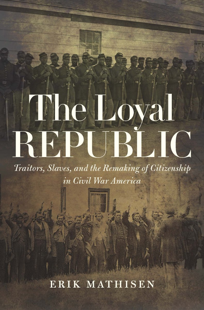 The Loyal Republic Traitors, Slaves, and the Remaking of Citizenship in Civil War America