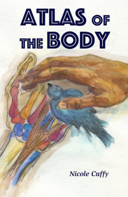 Atlas of the Body