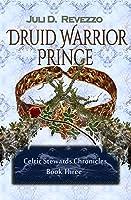 Druid Warrior Prince (Celtic Stewards Chronicles #3)