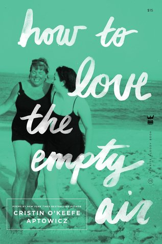How to Love the Empty Air by Cristin O'Keefe Aptowicz