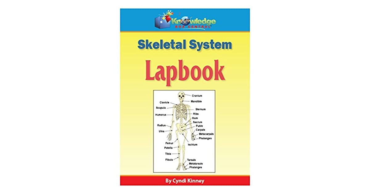 It is a graphic of Printable Skeletal System in human skeleton