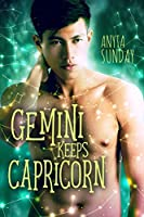 Gemini Keeps Capricorn (Signs of Love, #3)