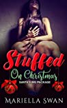 Stuffed on Christmas - Santa's Big Package by Mariella Swan