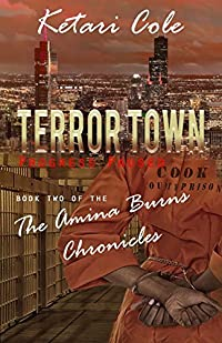 Terror Town: Progress Paused : Book 2 of The Amina Burns Chronicles (The Terror Town Series )