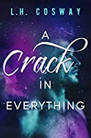 A Crack in Everything (Cracks Duet, #1)