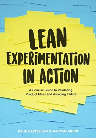 Lean Experimentation in Action: A Concise guide to validating product ideas and avoiding failure