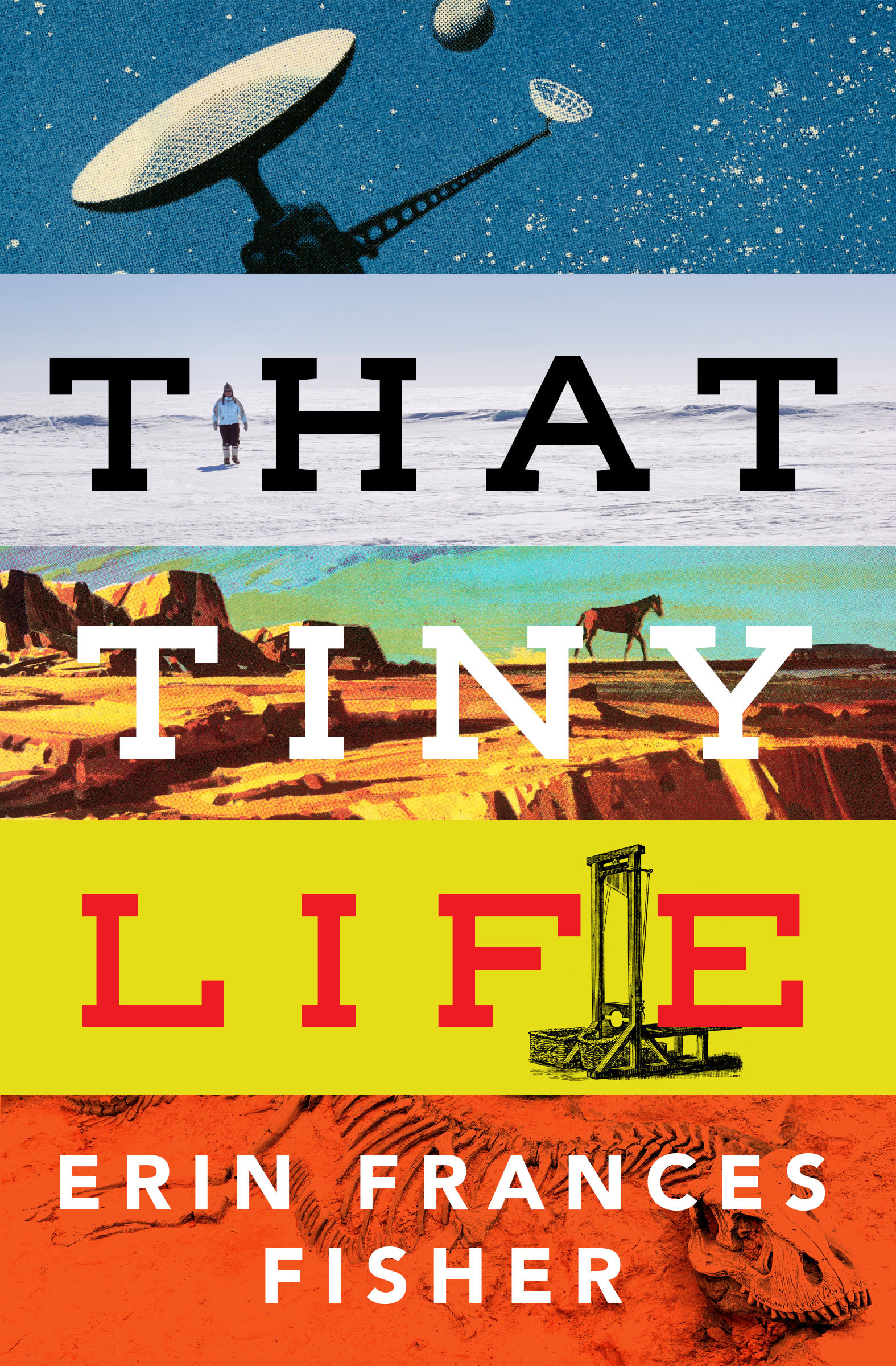 That Tiny Life - Erin Frances Fisher