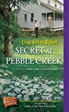 Secret at Pebble Creek (Hope Chest of Dreams #4)