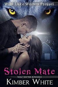 Stolen Mate (Wild Lake Origins #2)