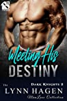 Meeting His Destiny (Dark Knights #2)
