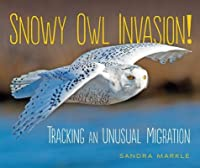 Snowy Owl Invasion!: Tracking an Unusual Migration