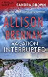 Vacation Interrupted (Lucy Kincaid, #4.5)