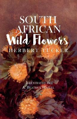 South African Wild Flowers - Illustrated by A. Beatrice Hazell