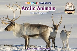 Arctic Animals (Non-Fiction Reader Book 1)