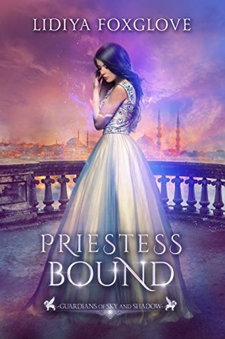 Priestess Bound (Guardians of Sky and Shadow, #2)