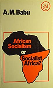 African Socialism or Socialist Africa? (Africa series)