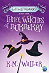 Lost Souls ParaAgency and the Three Witches of Burberry (Lost Souls ParaAgency #1)