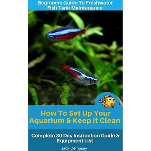 beginners guide to freshwater fish tank maintenance how to set up