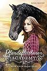 Reise nach Snowfields (Pferdeflüsterer-Academy, #1)